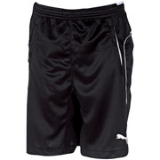 Szorty i Bermudy Puma Short Training