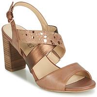 Buty Damskie Sandały Caprice BOLAO Brązowy