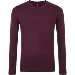 tekstylia Męskie Swetry Sols GLORY SWEATER MEN violeta