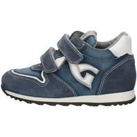 Buty Chłopiec Trampki niskie Nero Giardini P724190M Niebieski