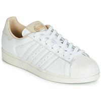 Buty Trampki niskie adidas Originals SUPERSTAR Biały / Beżowy