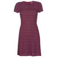 tekstylia Damskie Sukienki krótkie MICHAEL Michael Kors EMBELL FLARE MINI DRS Bordeaux