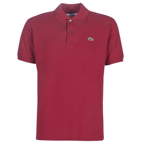 tekstylia Męskie Koszulki polo z krótkim rękawem Lacoste POLO L12 12 REGULAR Bordeaux
