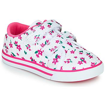 Buty Dziewczynka Trampki niskie Chicco FRANCY Biały / Różowy
