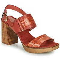 Buty Damskie Sandały Hispanitas PETRA Brązowy