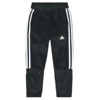 tekstylia Chłopiec Spodnie dresowe adidas Performance DANIELA Czarny