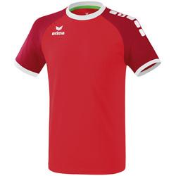 tekstylia Męskie T-shirty z krótkim rękawem Erima Maillot  Zenari 3.0 rouge/blanc
