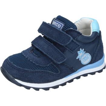 Buty Chłopiec Trampki niskie Enrico Coveri Sneakersy BN683 Niebieski