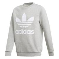tekstylia Chłopiec Bluzy adidas Originals TREFOIL CREW Szary
