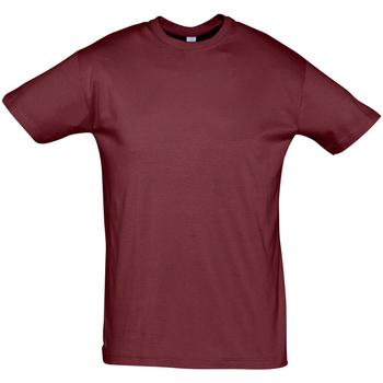 tekstylia Męskie T-shirty z krótkim rękawem Sols REGENT COLORS MEN Burdeo