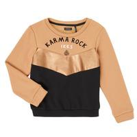 tekstylia Dziewczynka Bluzy Ikks XR15012 Brązowy