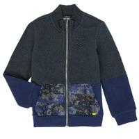 tekstylia Chłopiec Bluzy Ikks XR17103 Szary