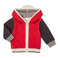 tekstylia Chłopiec Swetry rozpinane / Kardigany Catimini CR18000-38 Wielokolorowy