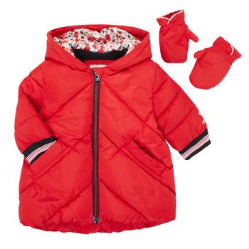 tekstylia Dziewczynka Kurtki pikowane Catimini CR42013-38 Czerwony