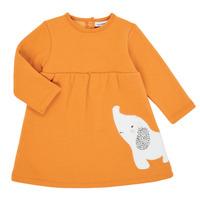 tekstylia Dziewczynka Sukienki krótkie Noukie's Z050083 Pomarańczowy