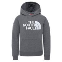 tekstylia Dziecko Bluzy The North Face DREW PEAK HOODIE Szary