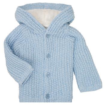 tekstylia Chłopiec Płaszcze Carrément Beau Y96053 Niebieski