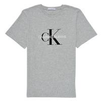 tekstylia Dziecko T-shirty z krótkim rękawem Calvin Klein Jeans MONOGRAM Szary