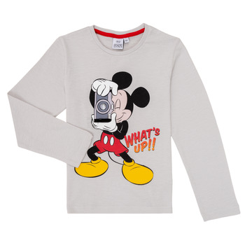tekstylia Chłopiec T-shirty z długim rękawem TEAM HEROES  MICKEY Szary