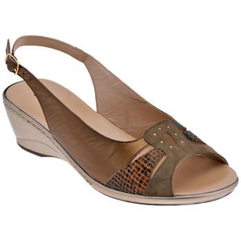 Buty Damskie Sandały Confort  Brązowy