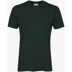 tekstylia Męskie T-shirty z krótkim rękawem Colorful Standard CLASSIC ORGANIC TEE hunter-green-verde