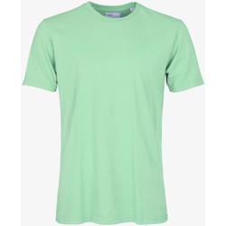 tekstylia Męskie T-shirty z krótkim rękawem Colorful Standard CLASSIC ORGANIC TEE faded-mint