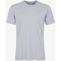 tekstylia Męskie T-shirty z krótkim rękawem Colorful Standard CLASSIC ORGANIC TEE limestone-grey