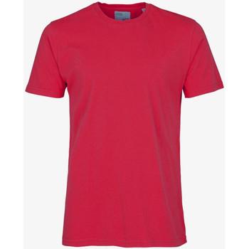 tekstylia Męskie T-shirty z krótkim rękawem Colorful Standard CLASSIC ORGANIC TEE scarlet-red
