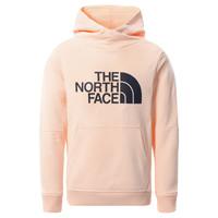 tekstylia Dziewczynka Bluzy The North Face DREW PEAK HOODIE 2.0 Różowy