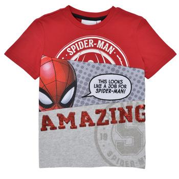 tekstylia Chłopiec T-shirty z krótkim rękawem Desigual 21SBTK08-3005 Wielokolorowy