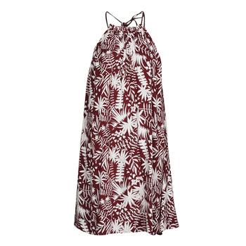 tekstylia Damskie Sukienki krótkie Freeman T.Porter ROCCA MOROCCO Bordeaux