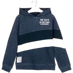 tekstylia Dziecko Bluzy Losan 023-6002AL Niebieski