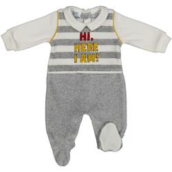 tekstylia Dziecko Zestawy dresowe Melby 20N2470 Szary