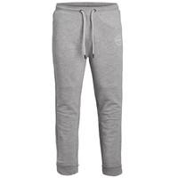 tekstylia Chłopiec Spodnie dresowe Jack & Jones JJIGORDON JJSHARK SWEAT PANT Szary