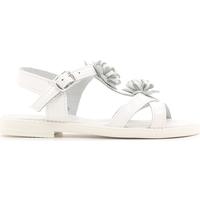 Buty Dziecko Sandały Lulu LT080056L Biały
