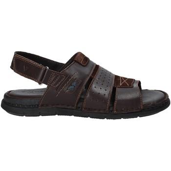 Buty Męskie Sandały Valleverde 20831 Brązowy