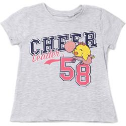 tekstylia Dziecko T-shirty z krótkim rękawem Chicco 09006955000000 Szary