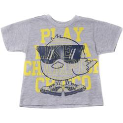 tekstylia Dziecko T-shirty z krótkim rękawem Chicco 09006918000000 Szary