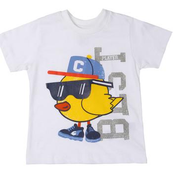 tekstylia Dziecko T-shirty z krótkim rękawem Chicco 09006918000000 Biały
