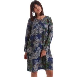 tekstylia Damskie Sukienki krótkie Gazel AB.AB.ML.0026 Niebieski