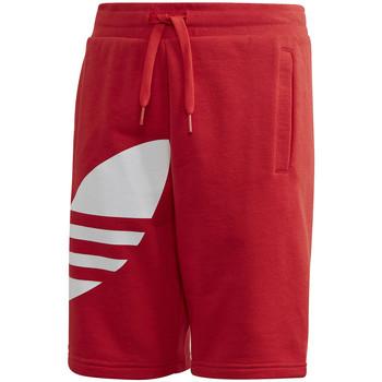 tekstylia Dziecko Szorty i Bermudy adidas Originals FM5658 Czerwony