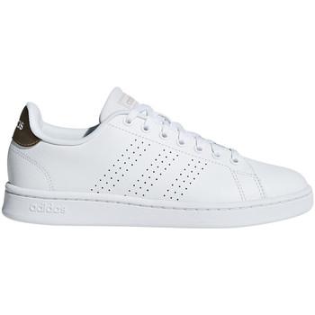 Buty Damskie Trampki niskie adidas Originals F36223 Biały