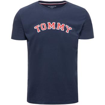 tekstylia Męskie T-shirty z krótkim rękawem Tommy Hilfiger UM0UM01623 Niebieski