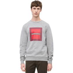 tekstylia Męskie Bluzy Calvin Klein Jeans K10K102722 Szary