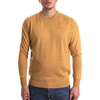 tekstylia Męskie Swetry Navigare NV1100530 Żółty