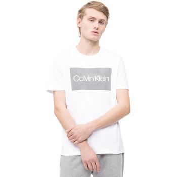 tekstylia Męskie T-shirty z krótkim rękawem Calvin Klein Jeans K10K103654 Biały
