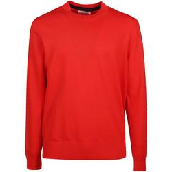 tekstylia Męskie Swetry Calvin Klein Jeans K10K103690 Czerwony
