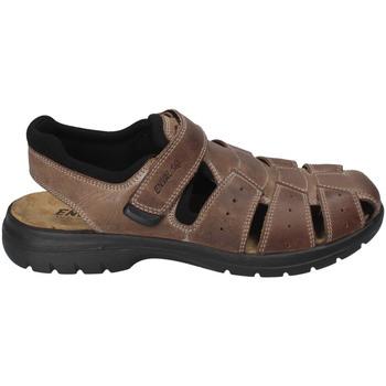 Buty Męskie Sandały Enval 3247522 Brązowy