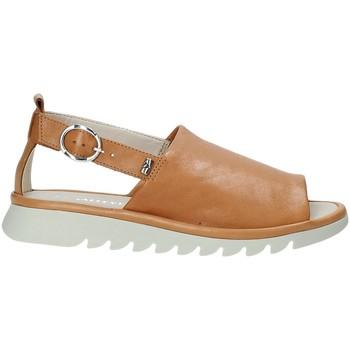 Buty Damskie Sandały Valleverde 41151 Brązowy