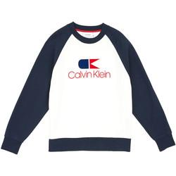 tekstylia Męskie Bluzy Calvin Klein Jeans K10K103940 Niebieski